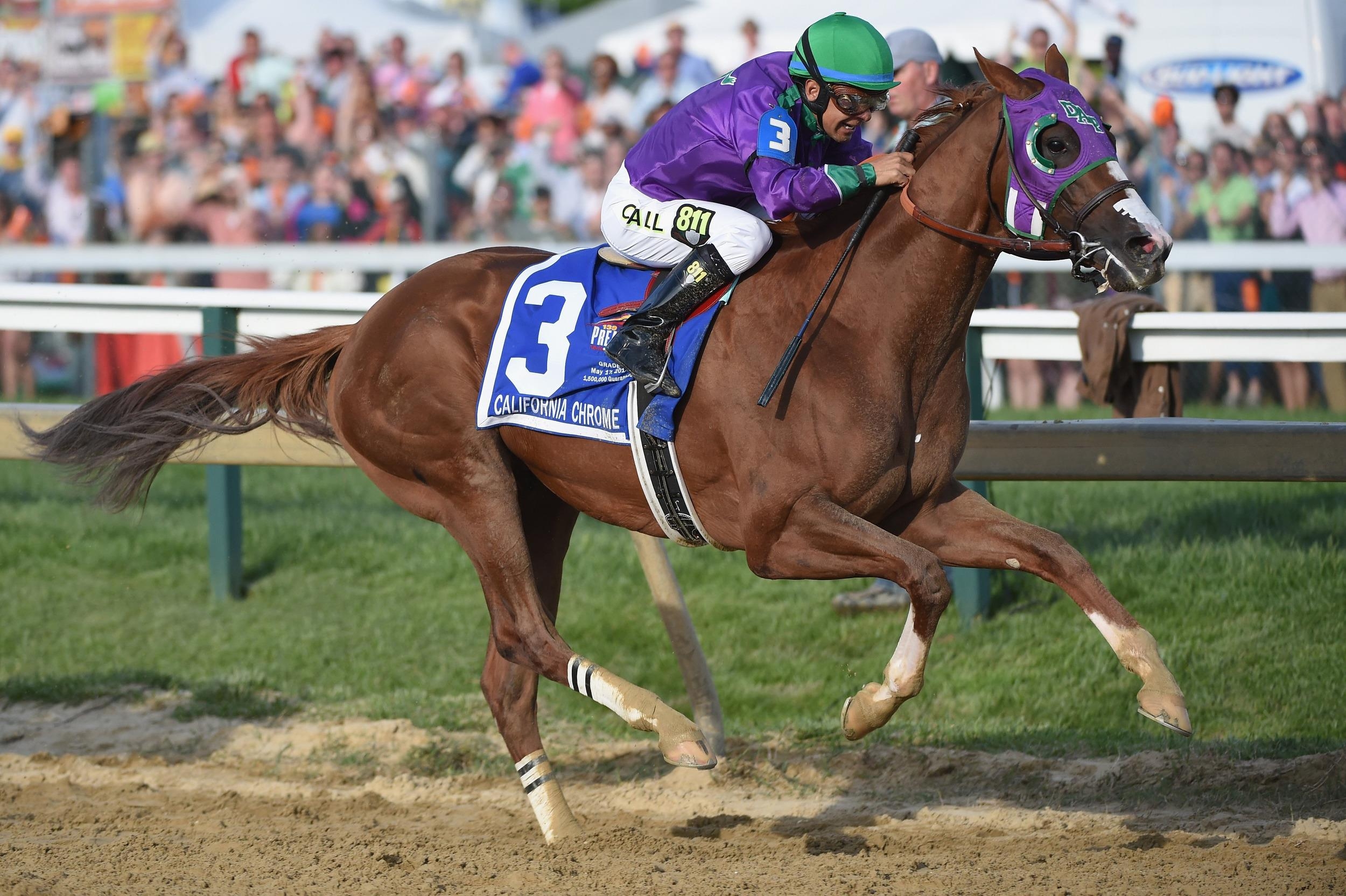 California chrome triple crown odds betting spread betting millionaires